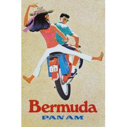Original vintage poster Pan...